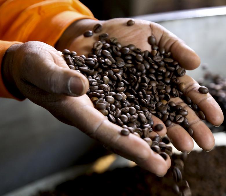 mani con caffe in grani